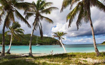 Dialysecruise naar de Caribbean