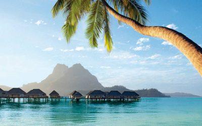 Dialysecruise: 20 november – Oceanië